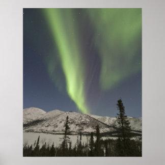 Las cortinas de los borealis de la aurora bailan a póster