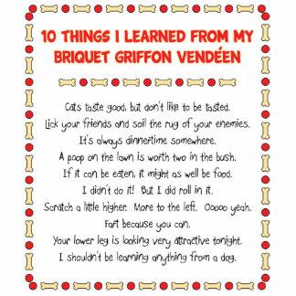 Las cosas divertidas aprendidas de Briquet Griffon Esculturas Fotograficas