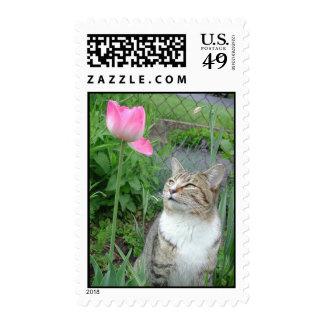 Las cosas están mirando para arriba sellos postales