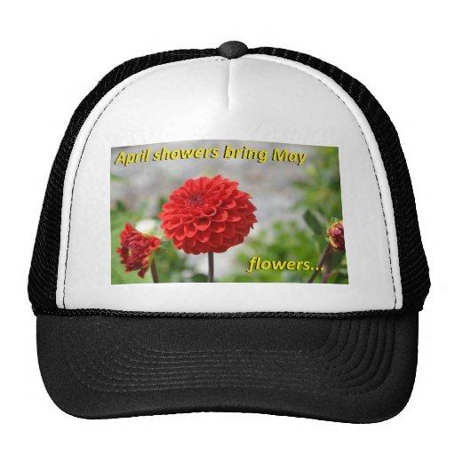 Las duchas de abril traen las flores de mayo gorro