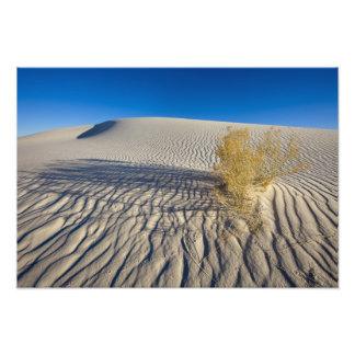 Las dunas de arena en el blanco enarenan el monume cojinete