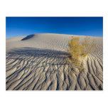 Las dunas de arena en el blanco enarenan el monume tarjetas postales