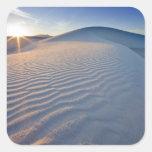 Las dunas de arena en el blanco enarenan el calcomanias cuadradas