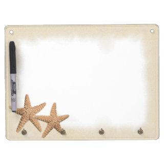 Las estrellas de mar en la arena secan al tablero  pizarra blanca