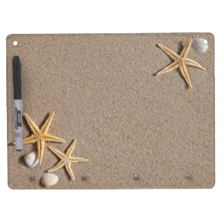 Las estrellas de mar en la arena secan al tablero  tableros blancos
