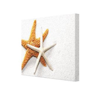 Las estrellas de mar estiraron la impresión de la
