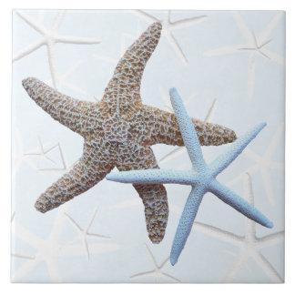 Las estrellas de mar juntan la teja cuadrada decor