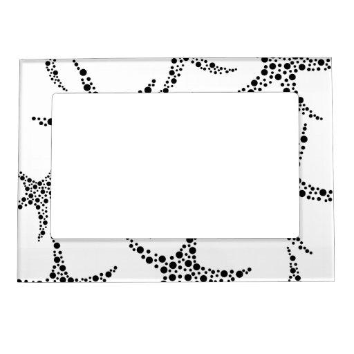 Las estrellas de mar modelan en blanco y negro. marcos magnéticos de fotos