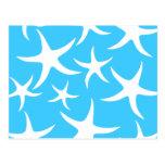 Las estrellas de mar modelan, las azules turquesas postales