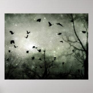 Las estrellas y los cuervos chocan póster