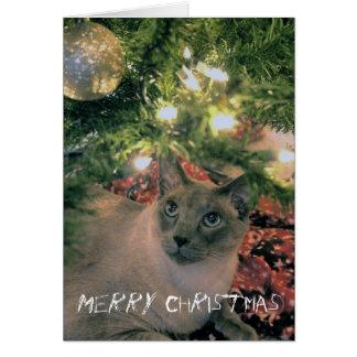 ¿Las Felices Navidad, donde son mi presente? Tarjeta De Felicitación