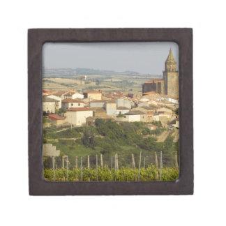 Las filas de las vides de uva en el primero plano  caja de recuerdo de calidad