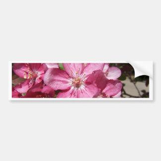 Las floraciones del árbol de Crabapple Pegatina De Parachoque