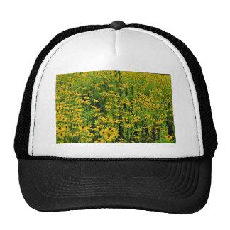 las flores amarillas, Hatley del norte, Estrie flo Gorros