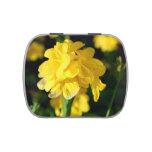 las flores amarillas se cierran encima de imagen f latas de caramelos