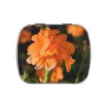 las flores anaranjadas se cierran encima de imagen frascos de dulces