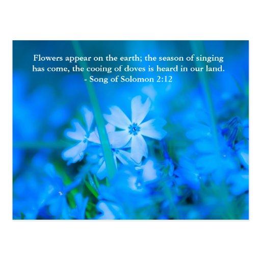 Las flores aparecen en la tierra; la estación del  postal