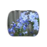 las flores azules del grafito se cierran para arri jarrones de dulces