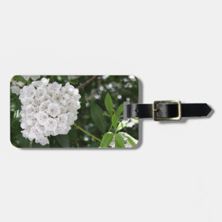 Las flores blancas de la estrella del laurel de etiqueta de maleta