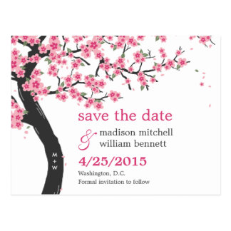 Las flores de cerezo ahorran la postal de la fecha