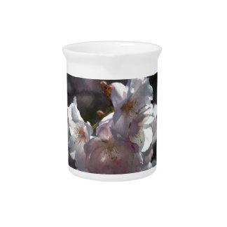 Las flores de cerezo de la mamá jarra de beber
