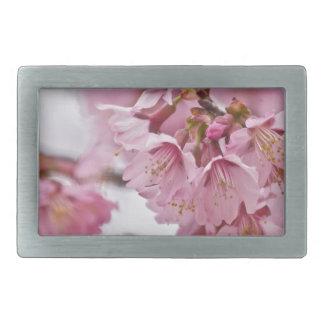 Las flores de cerezo de Sakura palidecen - rosa Hebilla Cinturón Rectangular