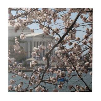 Las flores de cerezo en la floración en Washington Azulejo Cuadrado Pequeño
