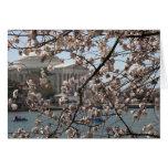Las flores de cerezo en la floración en Washington Tarjeta De Felicitación