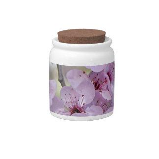Las flores de cerezo palidecen - rosa y blanco tarro de cerámica para dulces