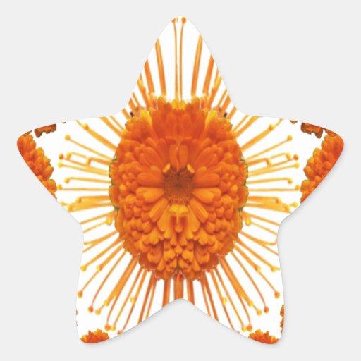 Las flores de la MARAVILLA - case el oro Calcomania Forma De Estrella