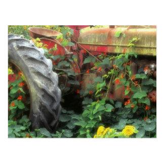 Las flores de la primavera adornan un tractor viej postal