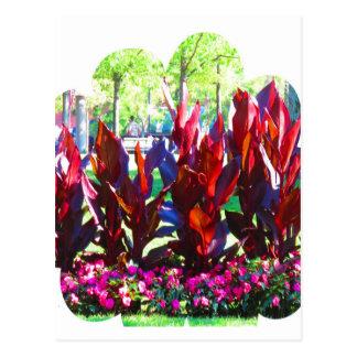 Las flores de los parques coloridos n de la ciudad tarjetas postales