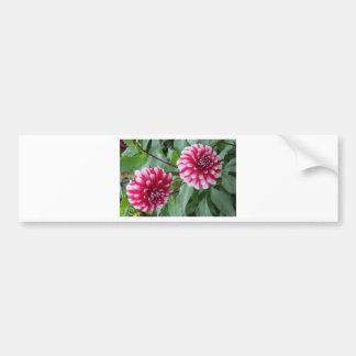 Las flores del jardín de Monet Pegatina De Parachoque