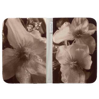 Las flores hermosas encienden la caja