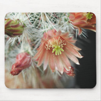Las flores perfeccionan el ratón Pads17 del ordena Mousepad