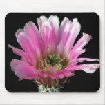 Las flores perfeccionan el ratón Pads3 del ordenad Alfombrillas De Ratones