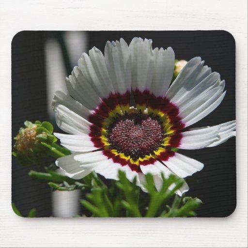 Las flores perfeccionan los cojines de ratón del o tapete de ratones