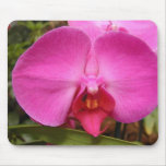 Las flores perfeccionan los cojines de ratón del o tapetes de ratón