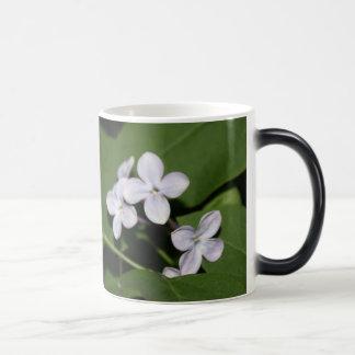 Las flores zurdas de la lila gozan de la taza de