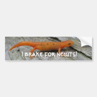 ¡Las fotos 003 de mayo, freno para los newts! Pegatina Para Auto