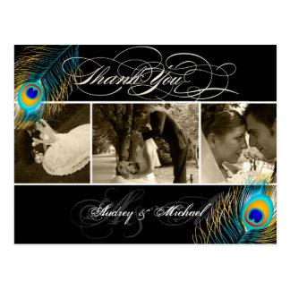 Las fotos del boda del pavo real de PixDezines le Postal