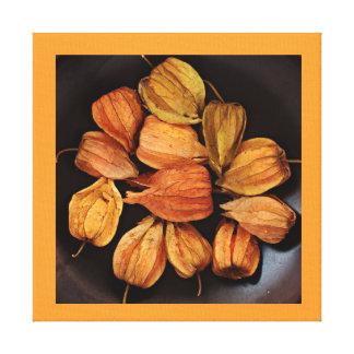 Las frutas chinas de la linterna (Physalis) envolv Lona Envuelta Para Galerías