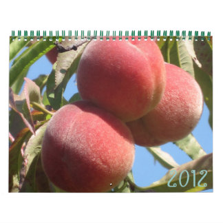 Las frutas de la madre naturaleza calendarios