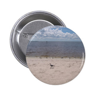 Las gaviotas acercan al mar pin
