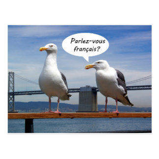 Las gaviotas hablan francés tarjeta postal
