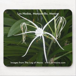 Las Hadas, Manzanillo, Mexico Mousepad