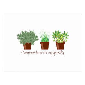 Las hierbas de cosecha propia son mi especialidad postales