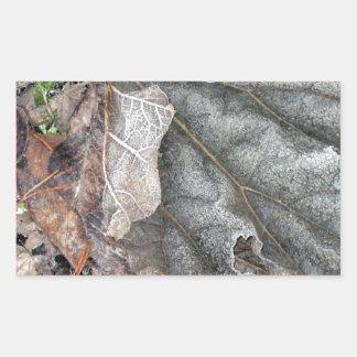 Las hojas cubiertas Frost del jardín japonés de Pegatina Rectangular