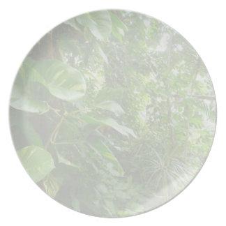 Las hojas gigantes eliminan la opinión de la selva platos de comidas