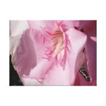 Las ilustraciones florales de la naturaleza….Lona  Lona Estirada Galerías